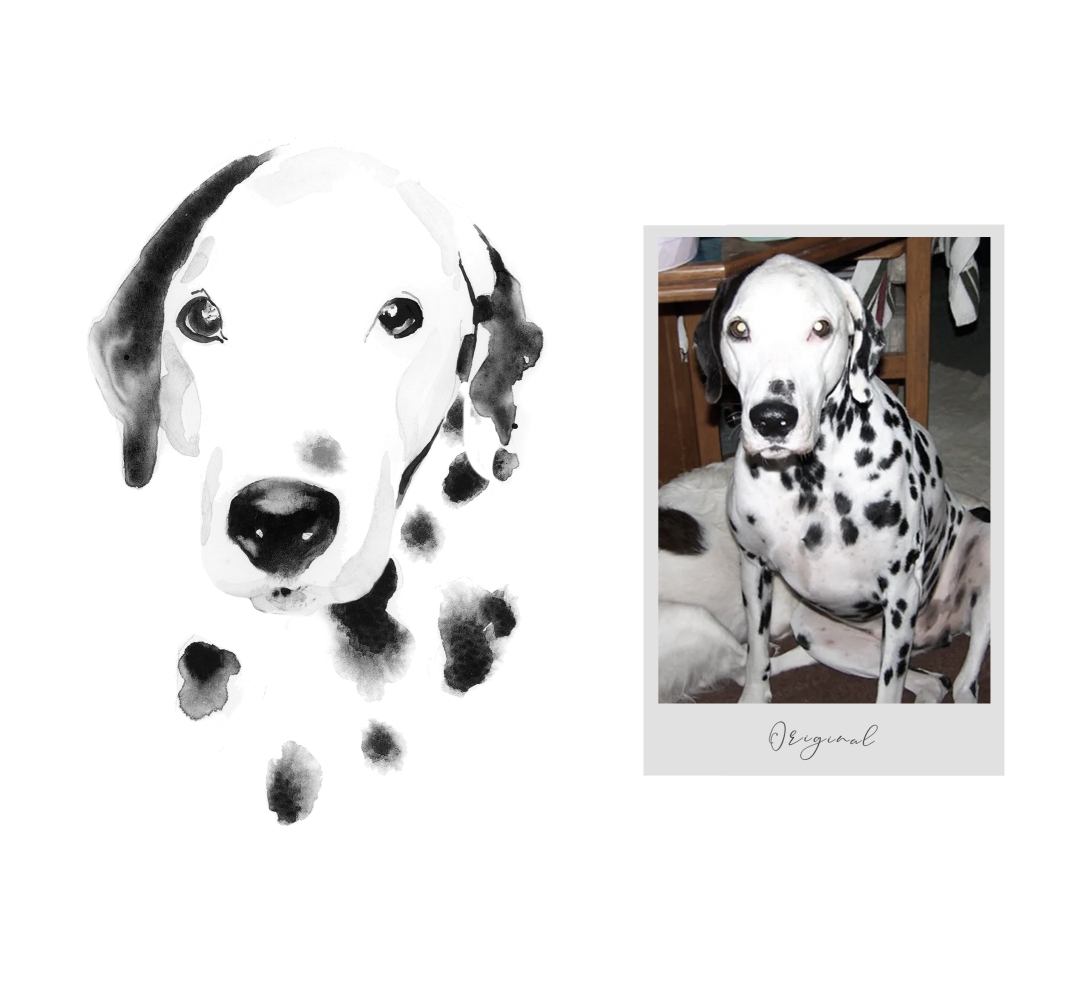 Dalmatian pet portrait in watercolor