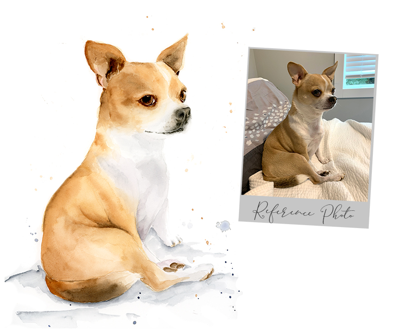 order a pet portrait