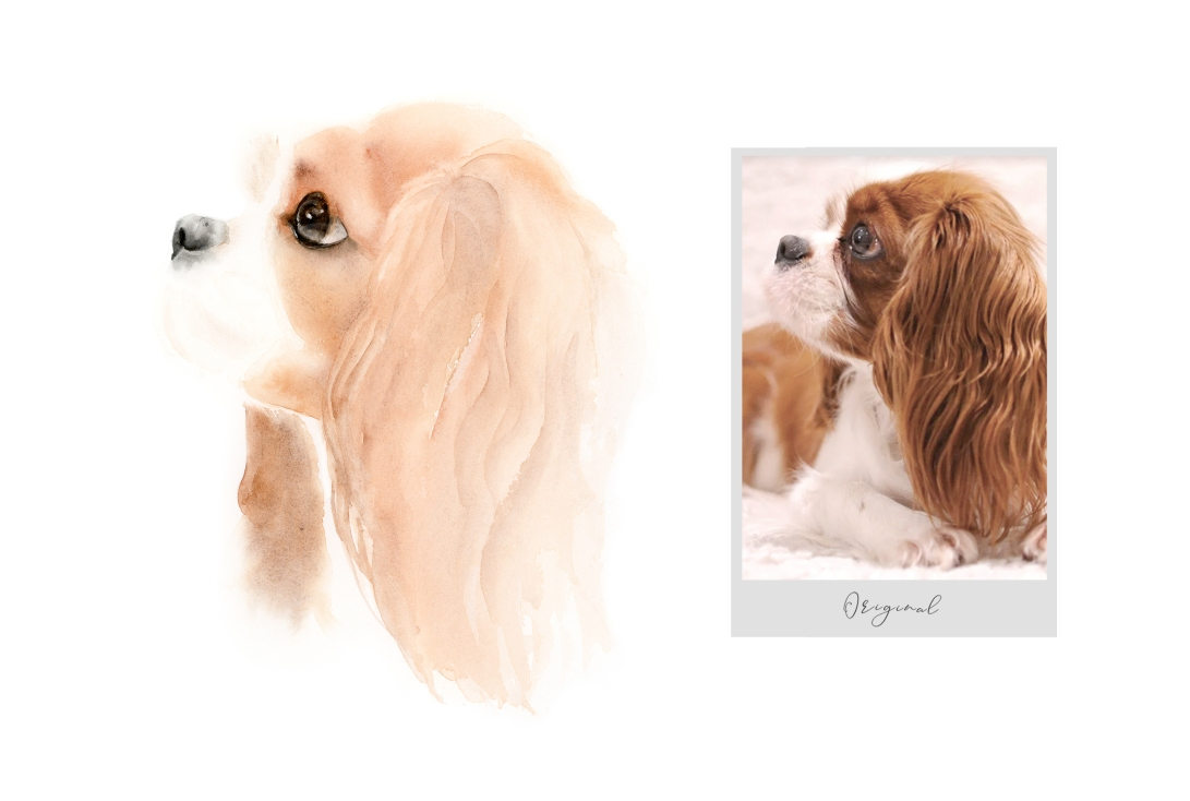 Spaniel watercolor pet portrait